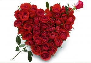 bouquet-coeur-roses-z
